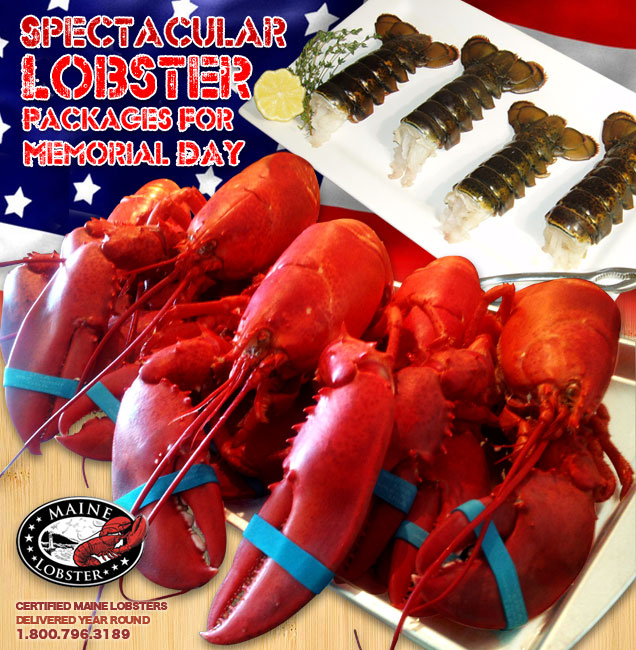 Lobster meat delivery to your door within 24 hours we mail order